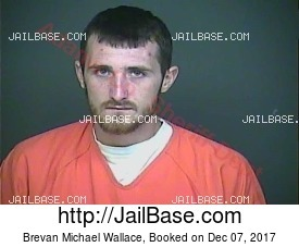 Brevan Michael Wallace mugshot picture