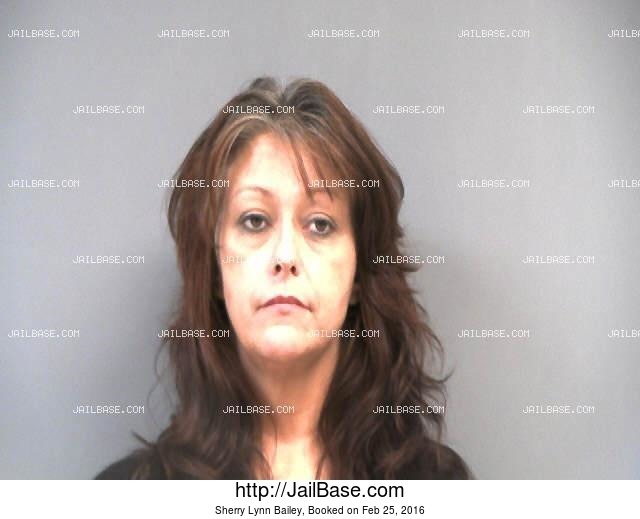 SHERRY LYNN BAILEY mugshot picture