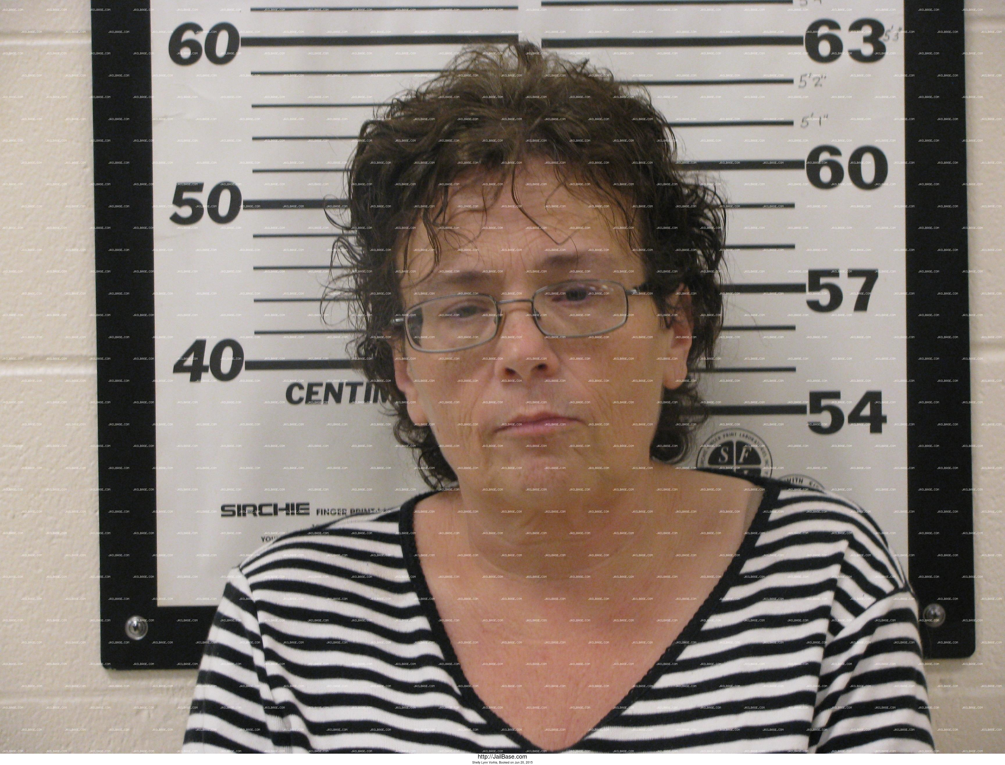 SHELLY LYNN VORHIS mugshot picture