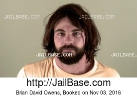 BRIAN DAVID OWENS mugshot picture