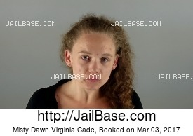 MISTY DAWN VIRGINIA CADE mugshot picture