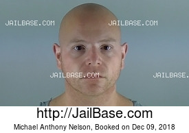 MICHAEL ANTHONY NELSON mugshot picture