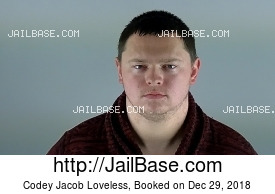 CODEY JACOB LOVELESS mugshot picture
