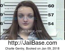 Charlie Gentry mugshot picture