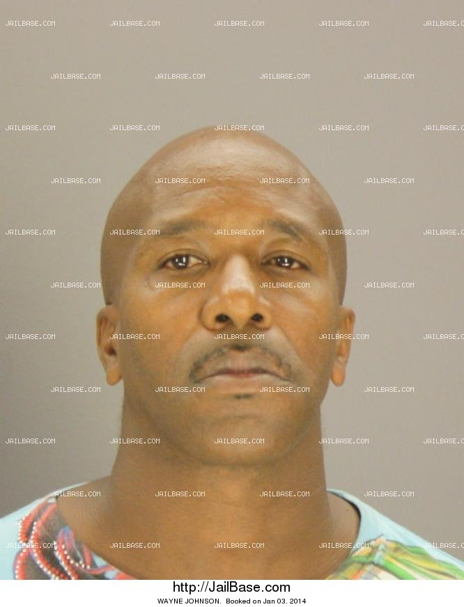 WAYNE JOHNSON mugshot picture