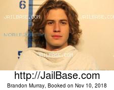 Brandon Murray mugshot picture