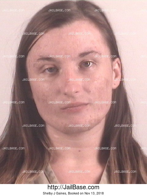 Shelby J Gaines mugshot picture