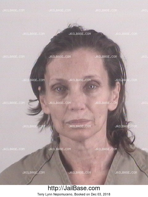 Terry Lynn Nepomuceno mugshot picture
