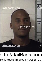 Antonio Gross mugshot picture