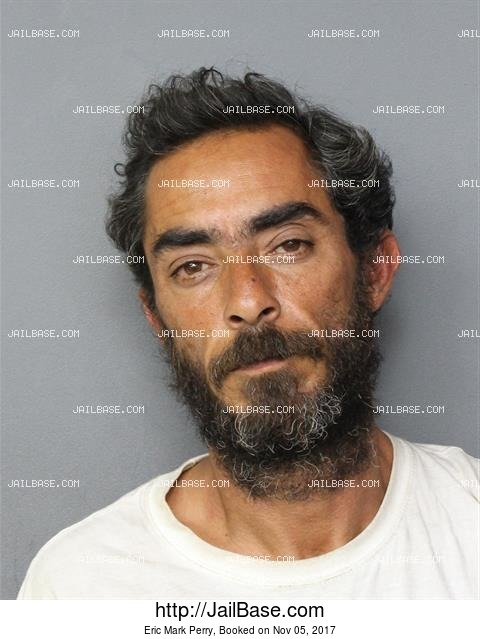 ERIC MARK PERRY mugshot picture