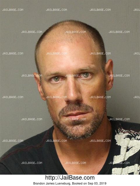 BRANDON JAMES LUENEBURG mugshot picture
