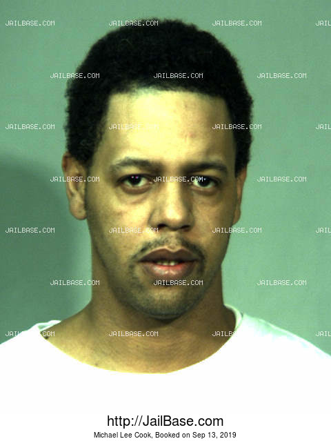 MICHAEL LEE COOK mugshot picture