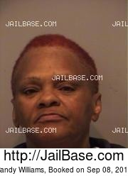 Candy Williams mugshot picture