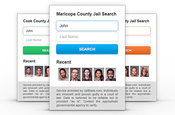 Widgets for County Jail Mugshots
